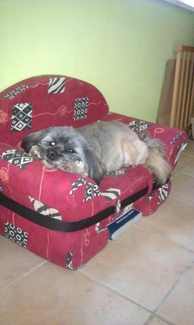 Chiara ist ganz entspannt
